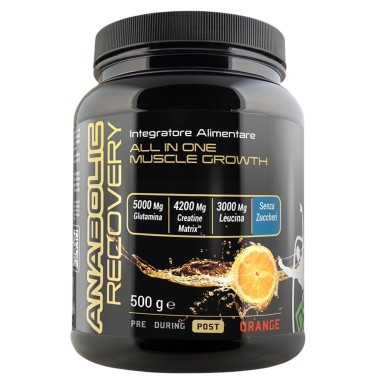 Net Anabolic Recovery 500 gr. Post Allenamento Completo con 13 Ingredienti - POST WORKOUT COMPLETI - in vendita su Nutribay.it