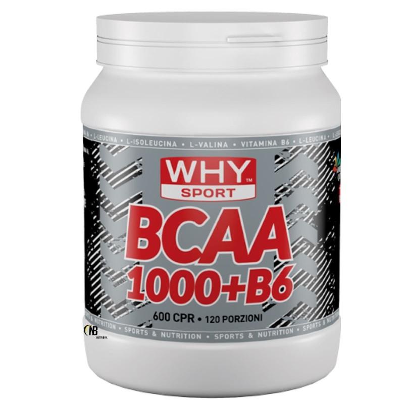 Why Bcaa 1000 600 cpr Aminoacidi In Compresse + Vitamina b6 AMINOACIDI BCAA in vendita su Nutribay.it
