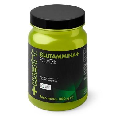 +WATT GLUTAMMINA+ GLUTAMMINA PURA KYOWA 300 gr. POLVERE OFFERTA ANTICATABOLICO - GLUTAMMINA - in vendita su Nutribay.it