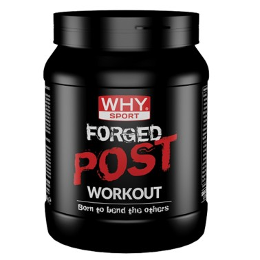 WHY SPORT Forged Post Workout 600 gr in vendita su Nutribay.it