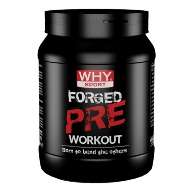 WHY SPORT Forged Pre Workout 300 gr - PRE ALLENAMENTO in vendita su Nutribay.it