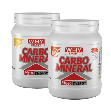 WHY SPORT CARBO MINERAL 500 gr in vendita su Nutribay.it