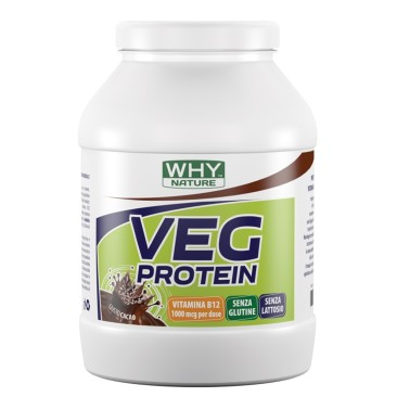 WHY NATURE VEG PROTEIN 750 gr in vendita su Nutribay.it