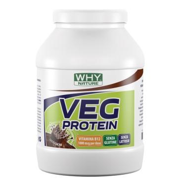 WHY NATURE VEG PROTEIN 750 gr in vendita su Nutribay.it