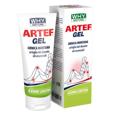WHY NATURE ARTEF GEL 100 ml in vendita su Nutribay.it