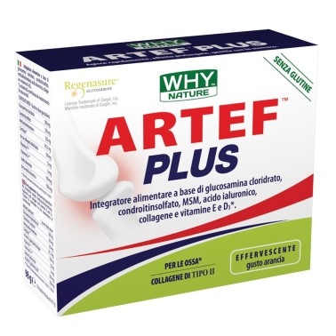 WHY NATURE ARTEF plus 14 BUSTE DA 7 gr in vendita su Nutribay.it