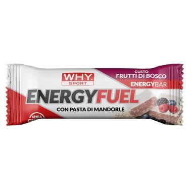 WHY SPORT ENERGY FUEL 1 barretta 30 gr in vendita su Nutribay.it